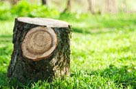 Highland tree stump removal services